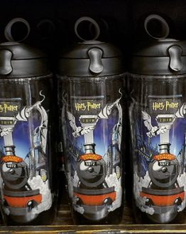 A Celebration of Harry Potter 2018 Universal Studios - Tervis Mug