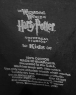 Hagrid's Magical Creatures Motorbike Adventure Universal Studios Parks Kids Shirt