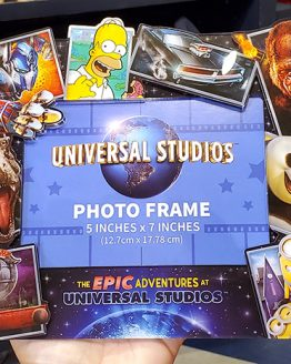 Universal Studios Parks Epic Characters 5x7 Photo Picture Frame